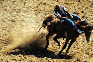 rodeo angola